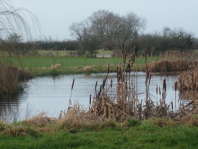Ponds near Lower Oakley Farm