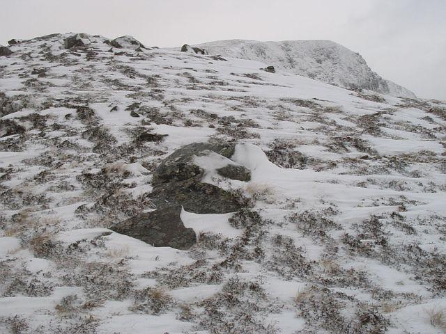 Montane heath, Druim Fada