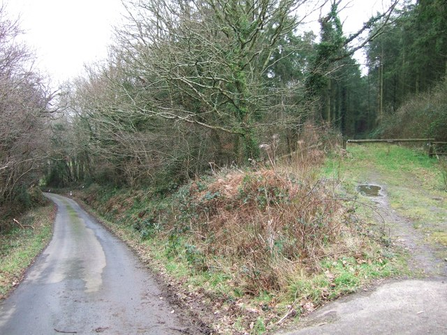 Entrance to Dodscott Wood