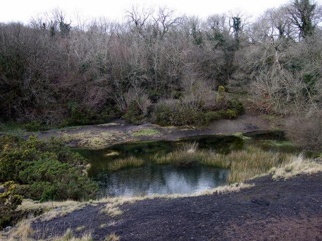 Llanfyrnach mine:  view west