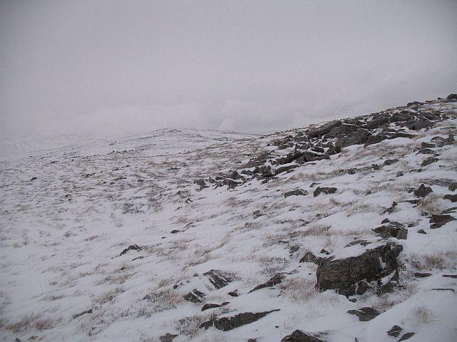 Today the ptarmigan are invisible