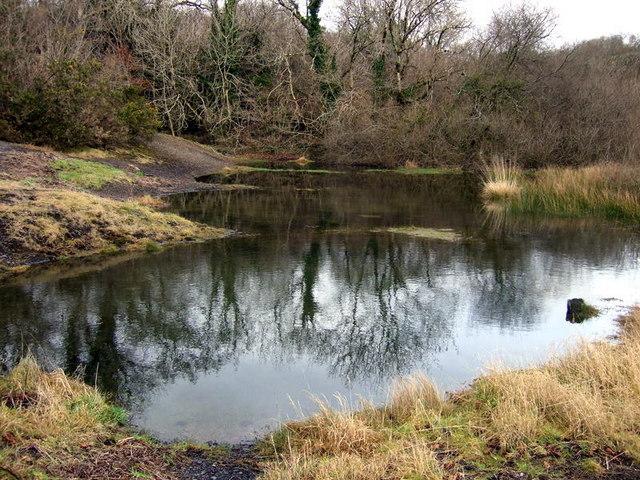 Llanfyrnach mine:  standing water