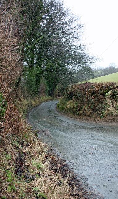Winding Lane