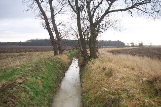 New Beck Drain Towards Roxton Wood