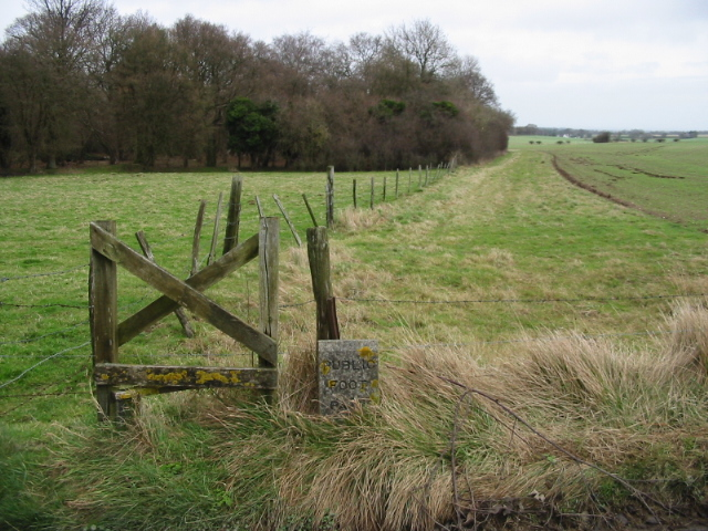 Footpath to Ashley