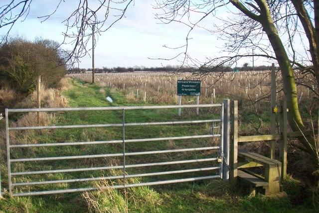 Gate near East End Farm