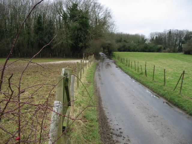 View along road through Eastling Wood