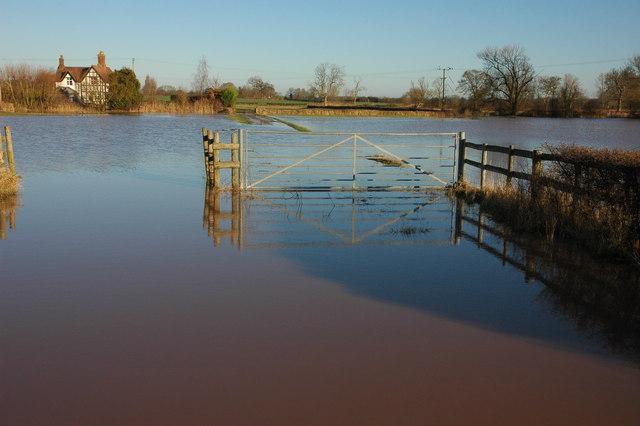 Flooded field, Moat Farm, Baughton
