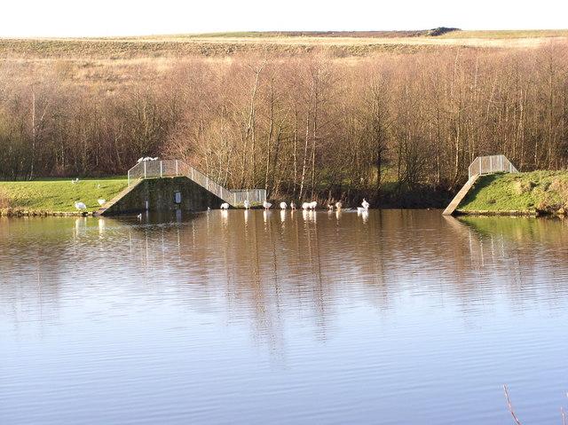 Rowley Lake