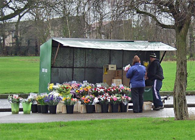 Flower stall, Bellfield Avenue, Hull