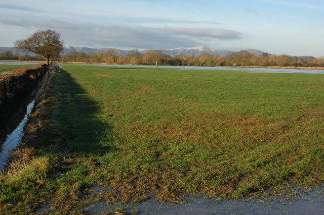 Flooded farmland at Baughton