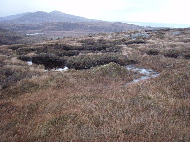 Moorland slopes of Cruachan