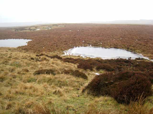 Ponds on Broken Moss