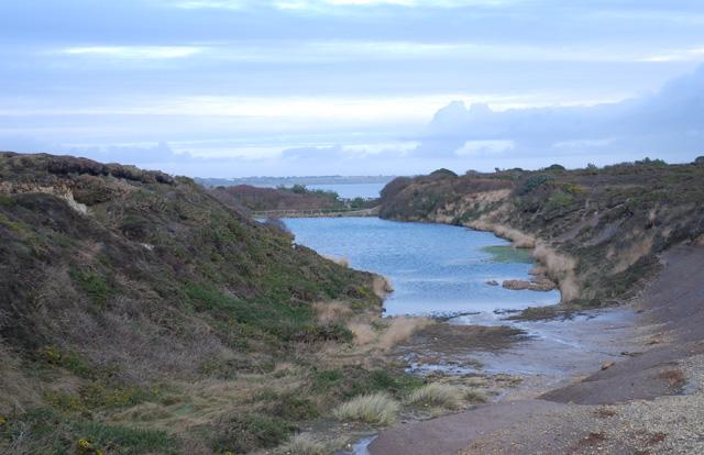 Pond on Hengistbury Head