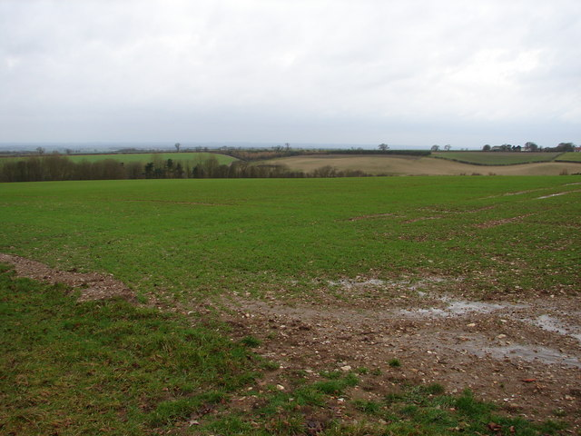 View from Top Farm