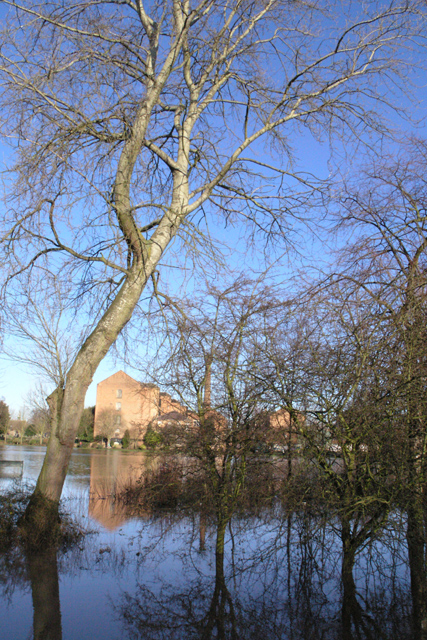 West Park is flooded (4)