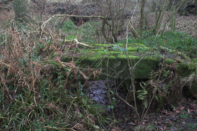Disused Sluice gate