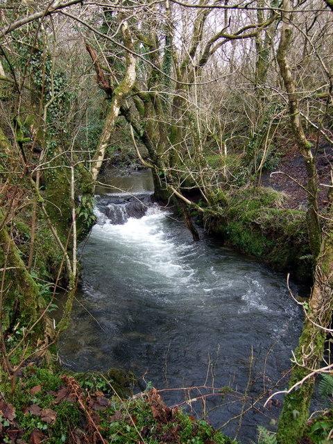 Afon Taf at Llanfyrnach