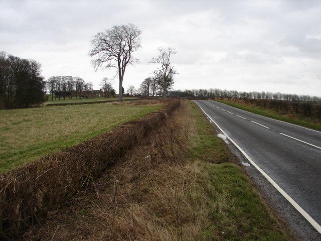 A157 Near Horse Pasture Farm