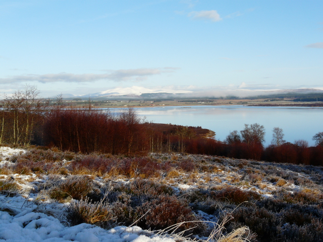 Near Gruids, looking towards Loch Shin