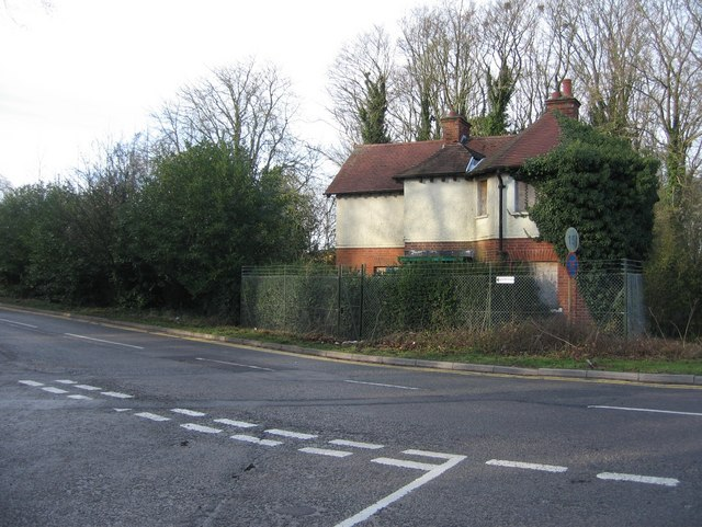 Overgrown dwelling