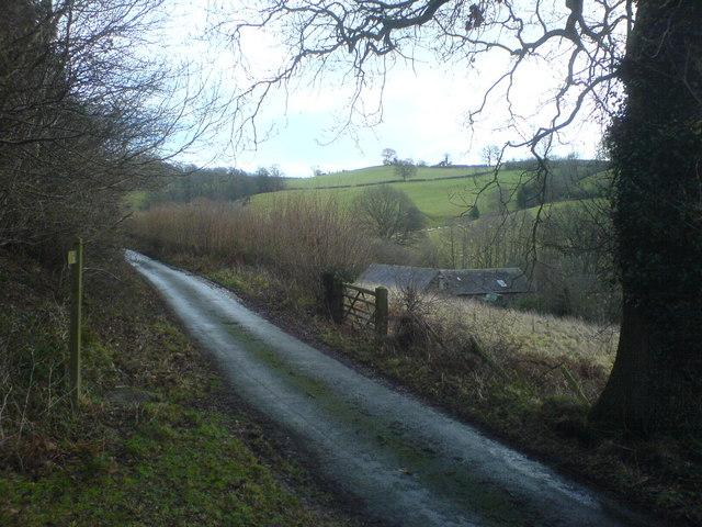 Lane above Nant y Criggion Farm