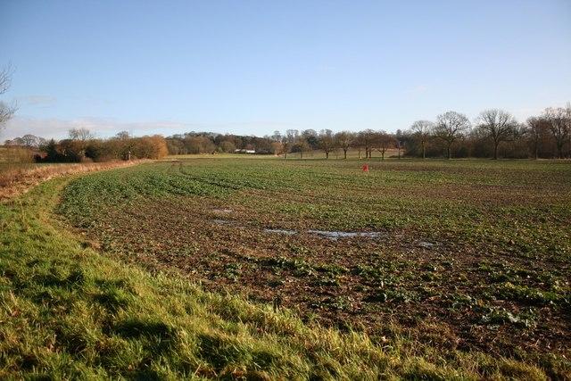 Tealby farmland