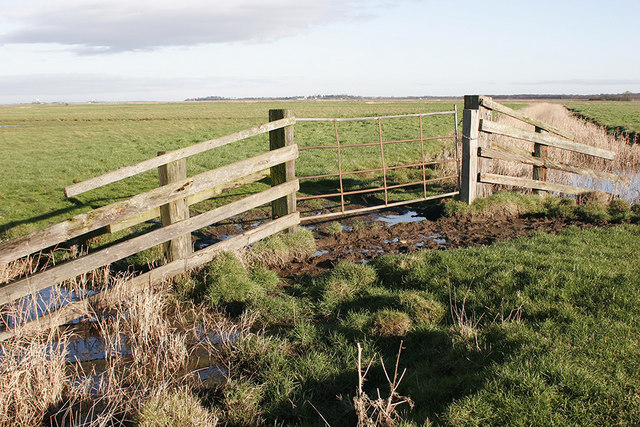 Gate and dyke across Chedgrave marshes