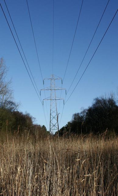 Pylon leading into Waveney Forest