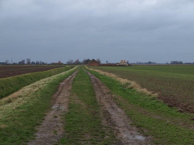 Footpath Along Track