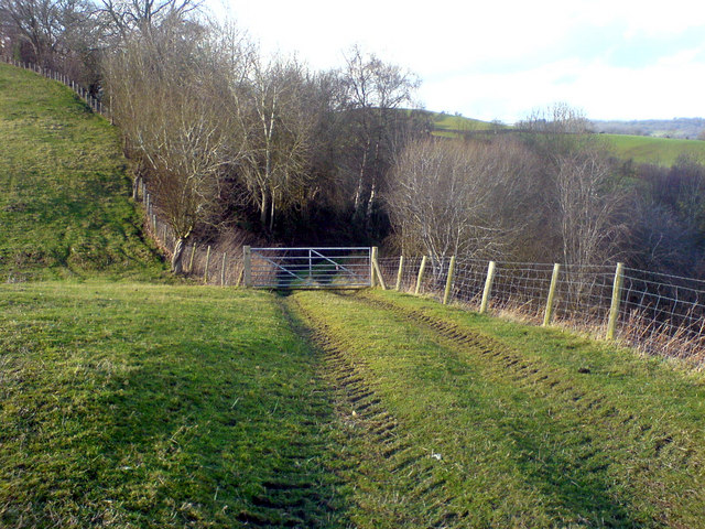 Gate at top of Bank Wood