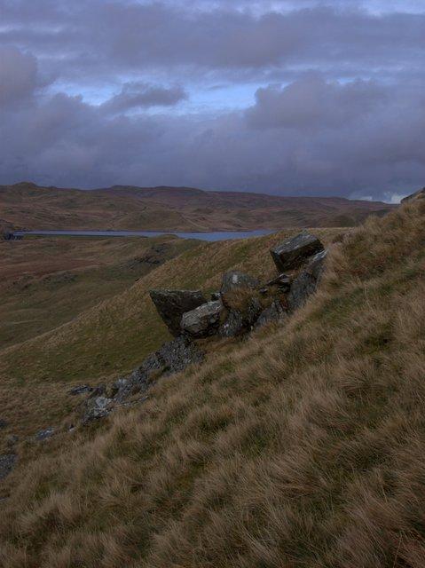 Upper Cwm Teifi