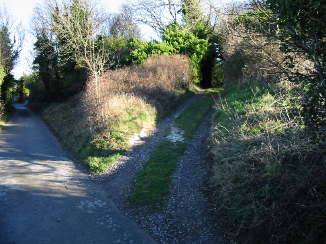 Footpath junction at Hog's Bush