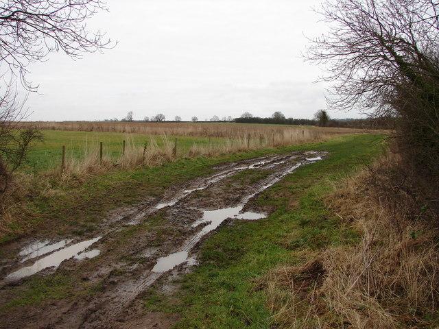 Muddy Track Near Highfield Farm