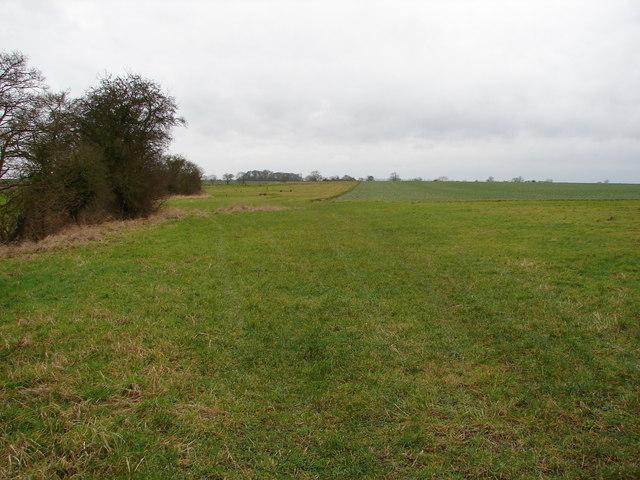 Fields Near Highfield Farm