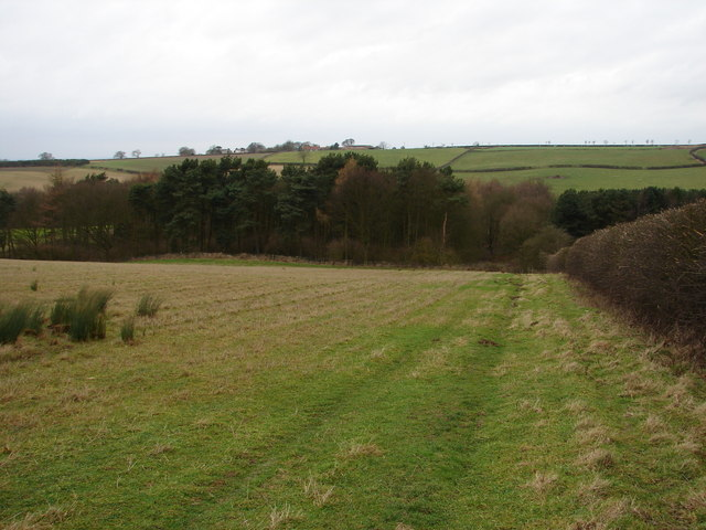 Sixhills in the Distance