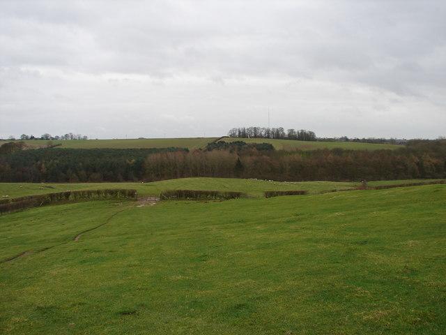 Looking Towards Top Farm