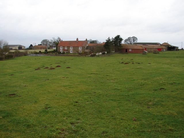 Mill Plat Farm