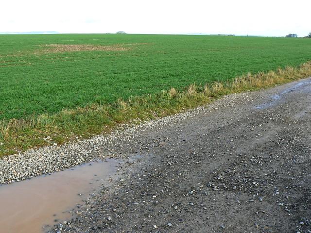 Farmland between Chirton Bottom and Marden Cowbag