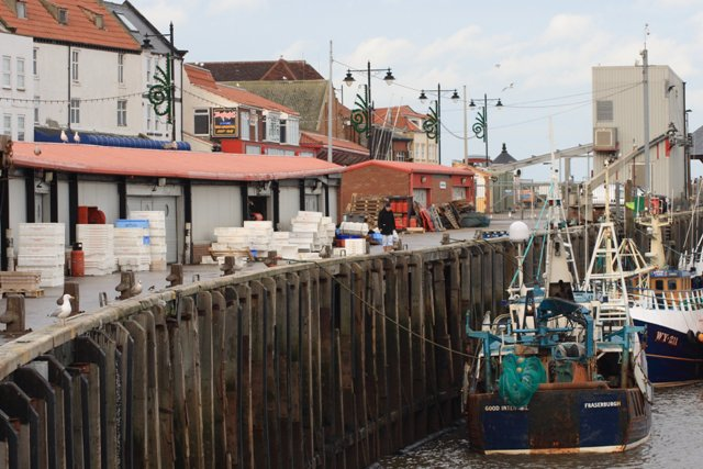 The Fish Quay