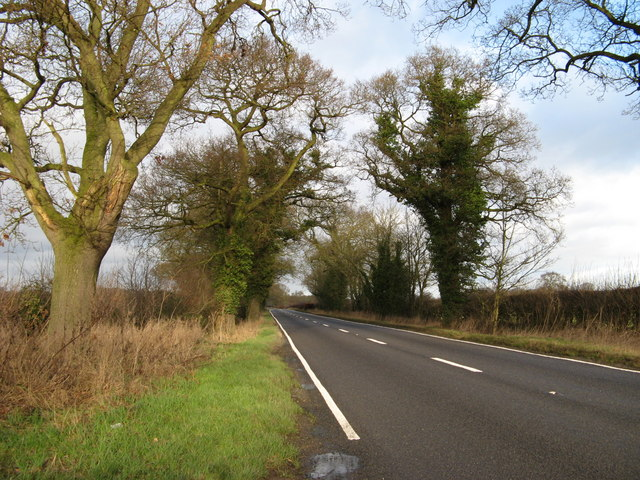 Road To Hodnet