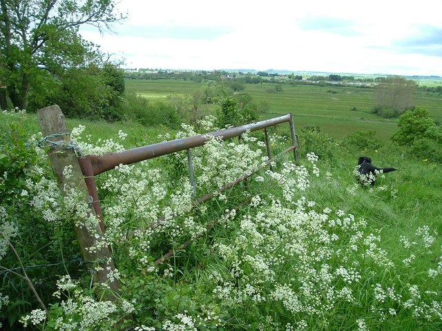Westonzoyland from Windmill Hill