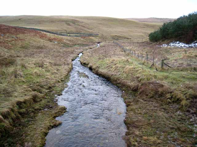 One of the headwaters of the Cottonshope Burn