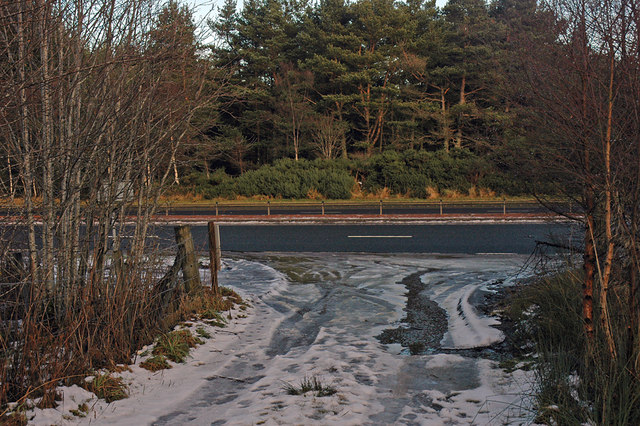 Junction of forest track and the A9