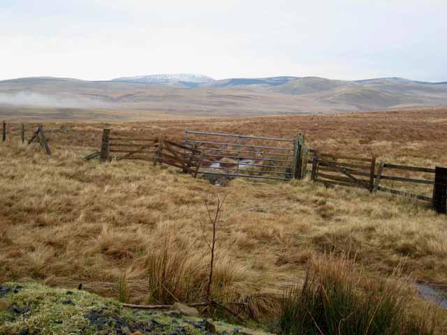 Otterburn Ranges near Ridlees Cairn
