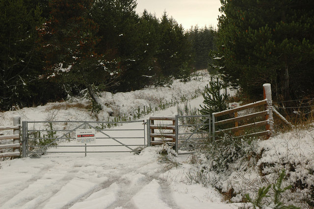 Gated entrance into private forest