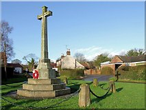 TF3465 : Village Cross, Old Bolingbroke by Dave Hitchborne