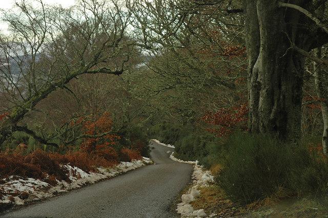Minor road near Foxhole