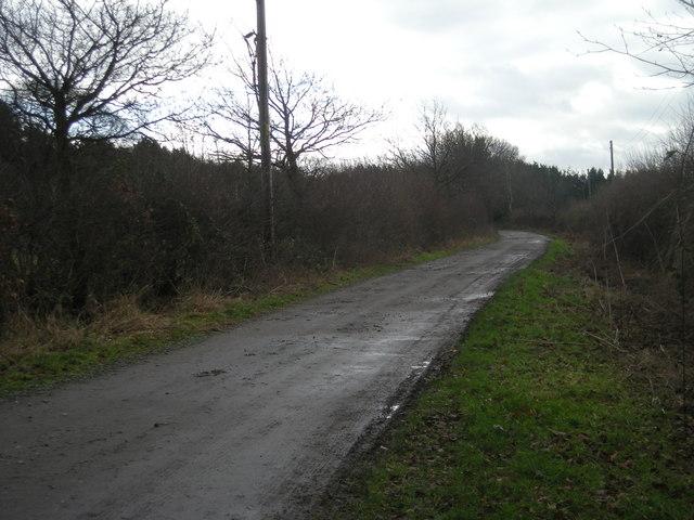 Track to Shawbury Heath woods.