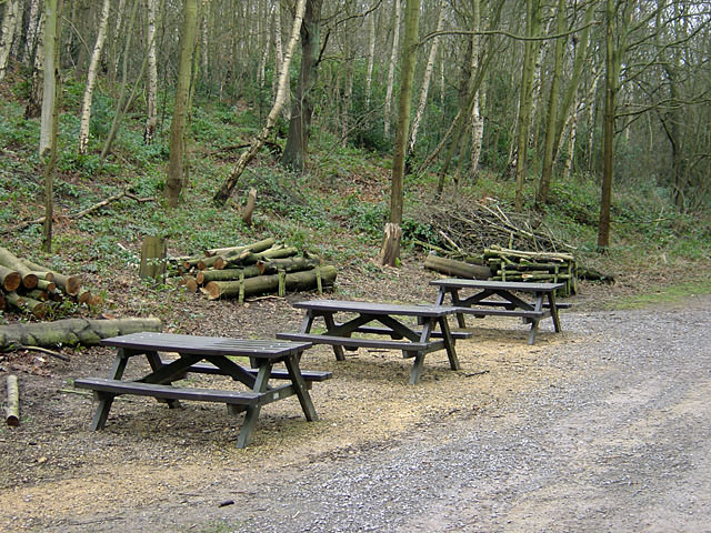 Bestwood Country Park - Picnic area near Alexandra Lodge